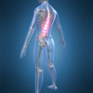 Adjustment (Koreksi) Chiropractic
